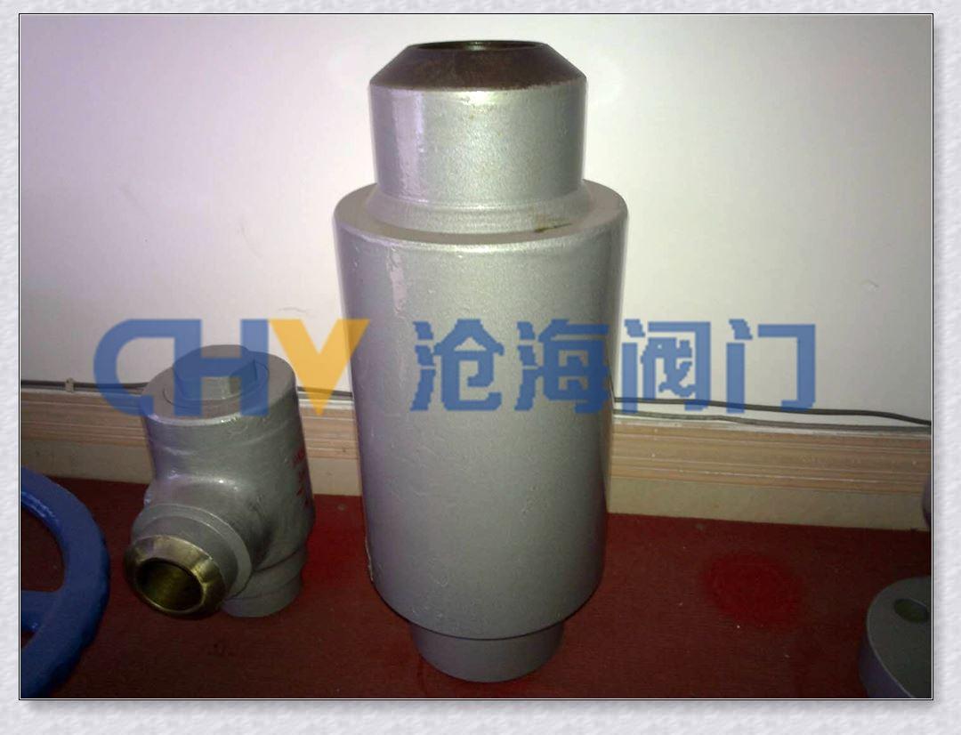 DHQ61Y油田低阻力防腐止回阀